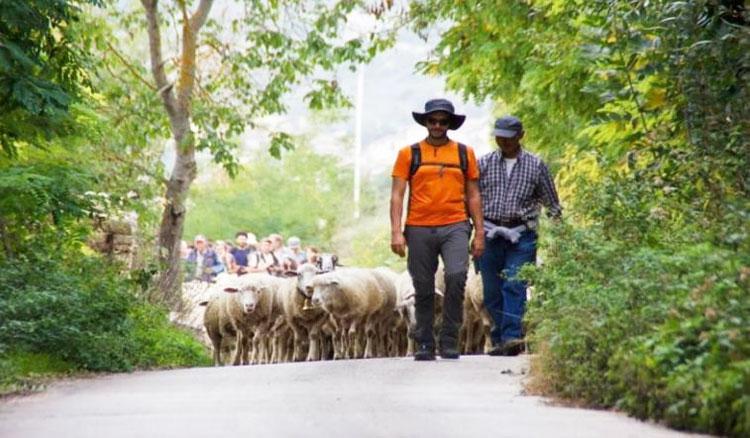 Sulle note del Tratturo dei Re, trekking musicale a Campodipietra domenica 28 aprile.