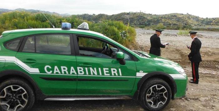 Isernia: Tutela della salute e dell'ambiente, controlli a tappeto dei Carabinieri, scattano denunce e sequestri. Chiusa una casa di riposo per anziani.
