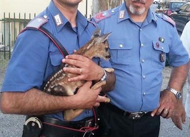 Monteroduni: Minaccia la ex moglie, 40enne denunciato dai Carabinieri.