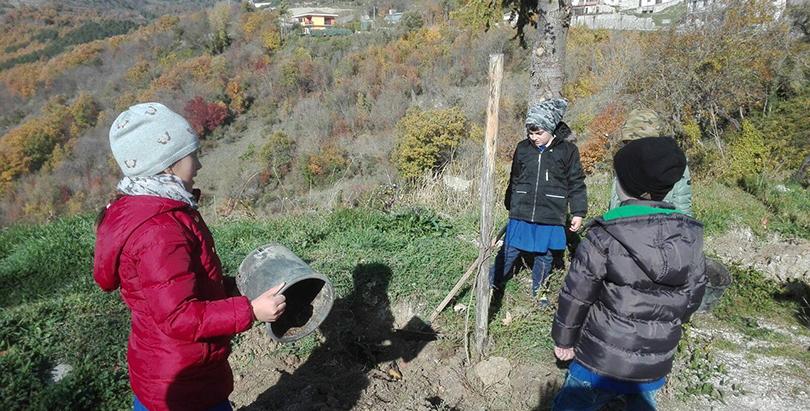 Macchiagodena: Il Borgo della Lettura celebra la Festa dell'Albero