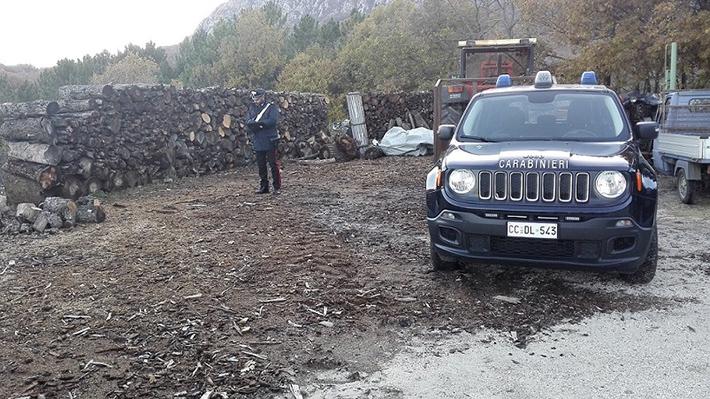 Castel San Vincenzo: lavoro nero all'interno di una impresa boschiva. Imprenditore denunciato dai Carabinieri.