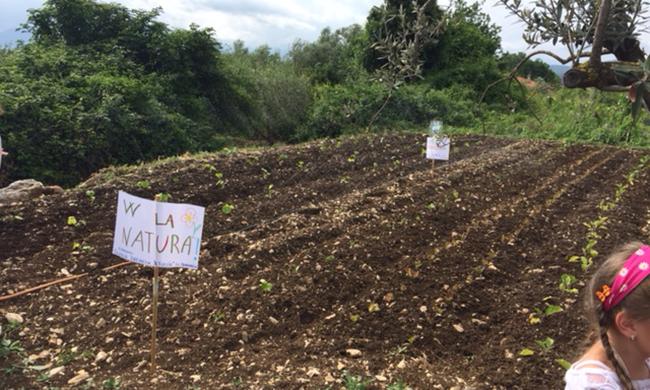 """""""Crea la tua Aiuola"""", sabato mattina la cerimonia di consegna degli orti alle scuole della città."""