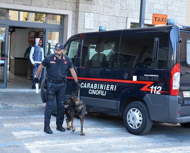 Isernia: Controlli straordinari dei Carabinieri, denunce e sequestri.   Impiegata l'unità cinofila antidroga del Nucleo di Chieti.