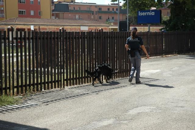 Isernia: il video in esclusiva dell'operazione antidroga della Polizia presso lo scalo Ferroviario di Isernia.