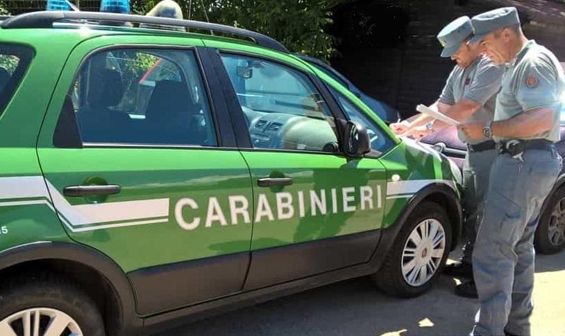 Isernia: Gestione e trasporto di rifiuti non identificati, scattano sanzioni da parte dei Carabinieri Forestali.