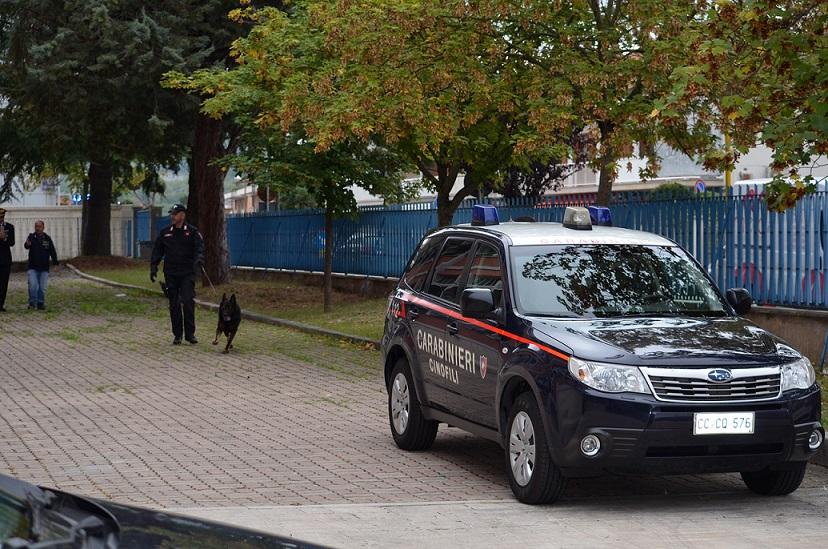 Isernia: Controlli straordinari dei Carabinieri, denunce e sequestri. Sgominata banda di ladri a San Lazzaro.