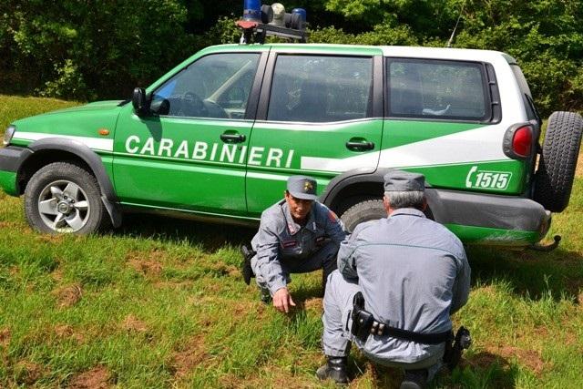 Isernia: Controlli antidroga dei Carabinieri, uno straniero segnalato per possesso di marijuana.