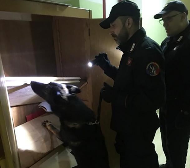 Agnone: servizio a largo raggio da parte dei Carabinieri. Vigilanza nei pressi degli istituti scolastici. Impiegata anche una unità cinofila.