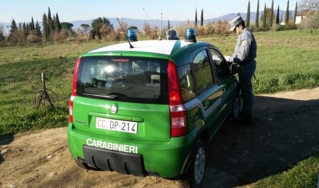 Isernia: Tutela della salute e della sicurezza sui luoghi di lavoro. Scattano denunce da parte dei Carabinieri.
