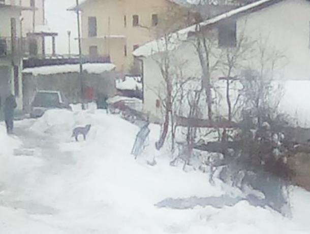 Rionero Sannitico: Emergenza neve fronteggiata con grande sacrificio di tutti. Il consigliere comunale Miraldi evidenzia sforzi di volontari, mezzi e comune.