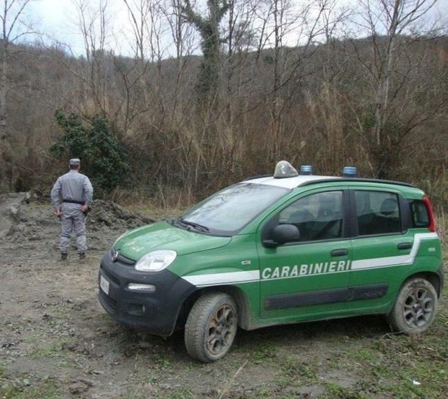 Orso avvistato nella Valle del Volturno, i Consigli dei Carabinieri Forestali