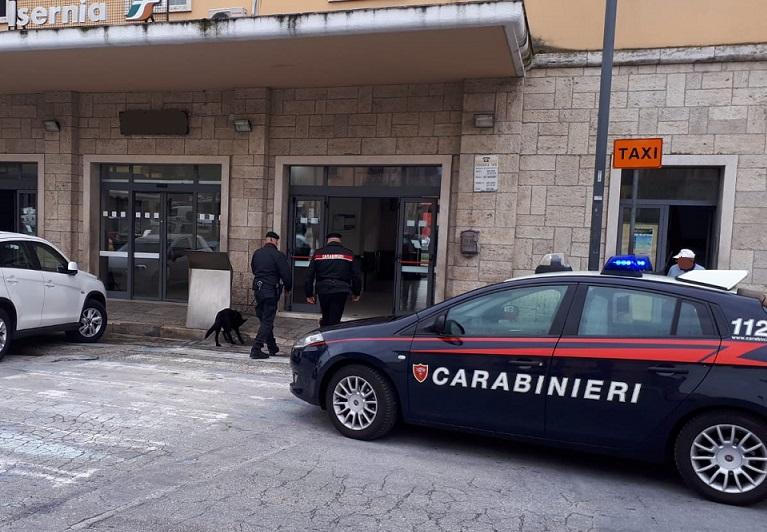 Isernia: Perquisizioni a tappeto dei Carabinieri. Due denunce per detenzione di droga ai fini di spaccio. Impiegata anche una unità cinofila dell'Arma di Chieti.