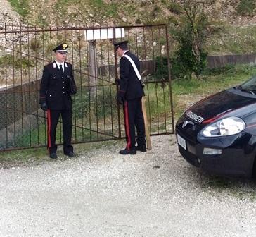 Venafro: Residenza fittizia di una società per truffare le compagnia assicurative; un campano denunciato dai Carabinieri.