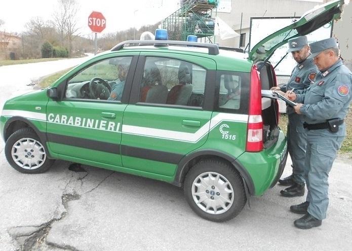 Venafro: controlli dei Carabinieri su tutto il territorio. Scattano ben cinque denunce.