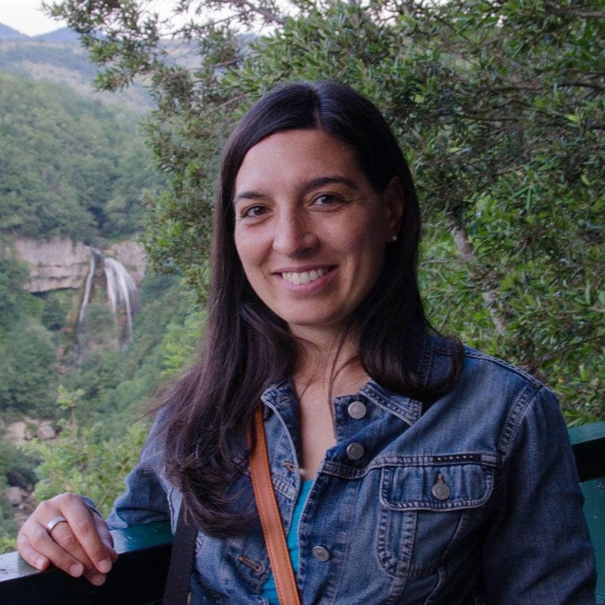 """Orso ucciso a Rionero Sannitico. Tavone (Salviamo l'Orso): """"Occorre sensibilità ambientale per proteggere la nostra fauna""""."""