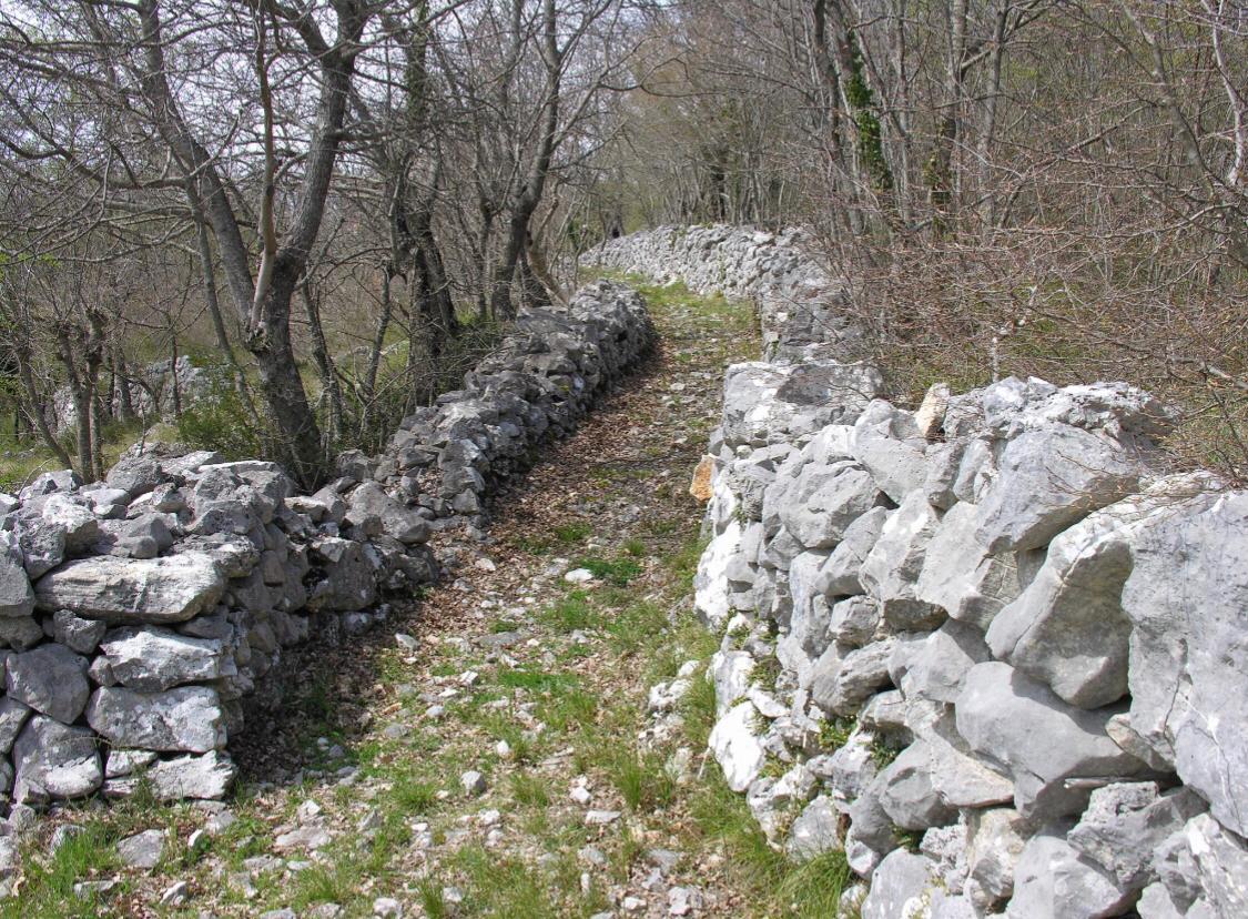 """Filignano: il consigliere comunale Daniele Di Meo lancia il progetto """"Camminando lentamente alla scoperta della natura""""."""
